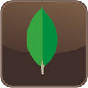 mongodb-compass-isolated icon